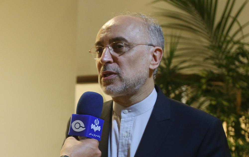 Iran sticks to deadline of nuclear deal with centrifuge move: IAEA
