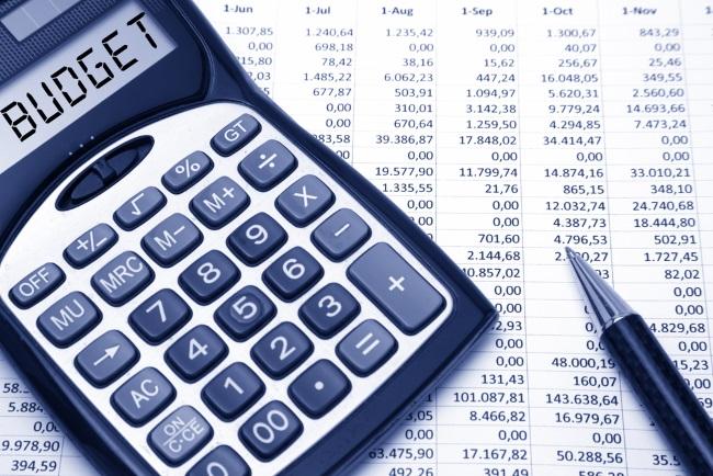 Parliament Slashes Budget | Financial Tribune