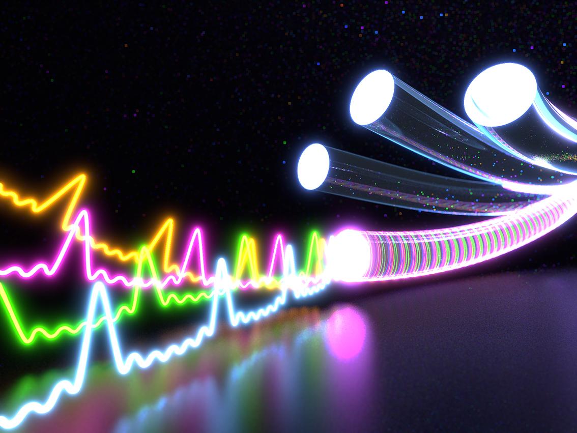 Fiber Optic Network Sees 19 Growth Financial Tribune