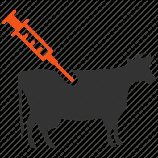 meeting local demand for animal vaccine financial tribune shingles vaccine clipart influenza vaccine clipart
