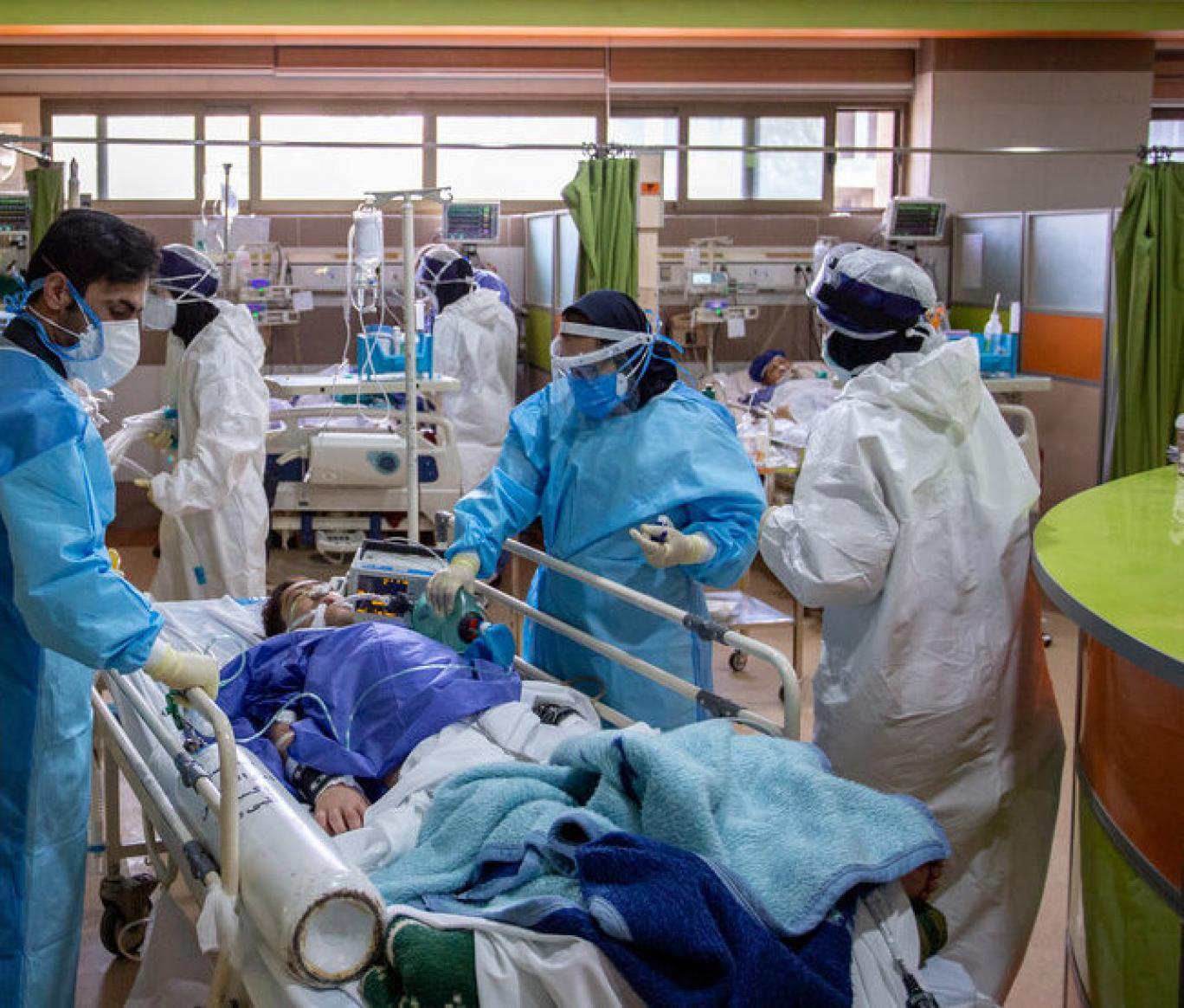 Iran Daily Virus Deaths Hit Record High | Financial Tribune