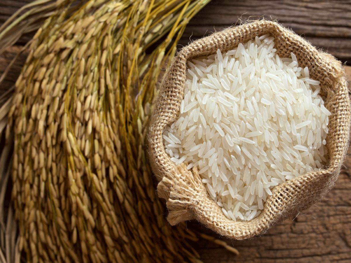 Indian Delegation Seeks Rice Deals In Iran Financial Tribune