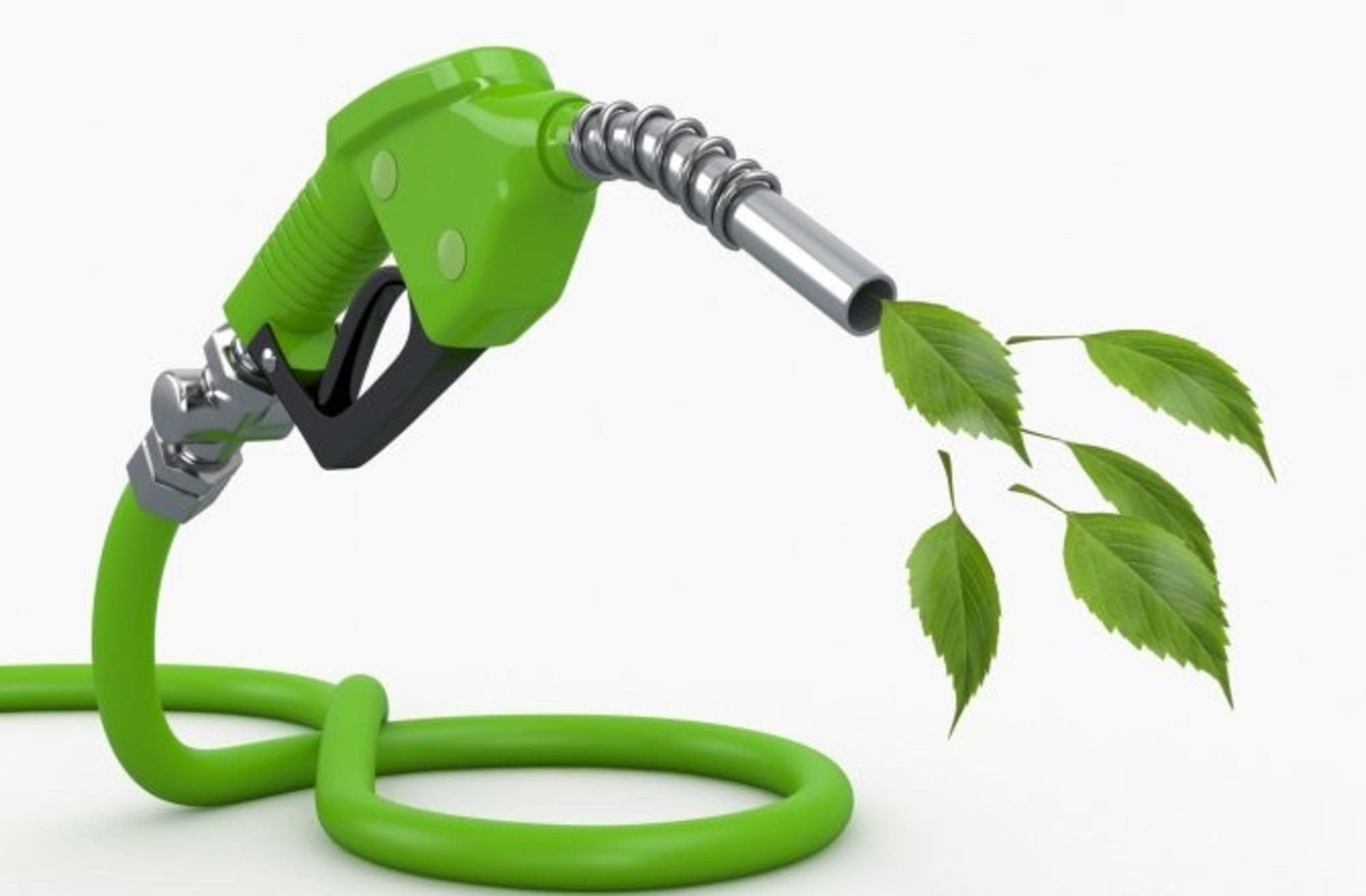 Biofuels Not Very Green | Financial Tribune