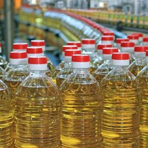 Export of Vegetable  Oils Banned