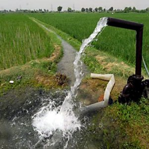 56% of Water Used in Agro Sector Wasted