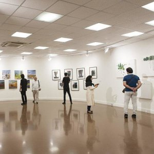 The number of art galleries in Iran has been on the rise in recent years.