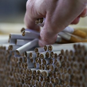 About 49.3 billion cigarettes were produced in Iran during the last fiscal year (March 2017-18), registering a 10% rise compared with the year before.