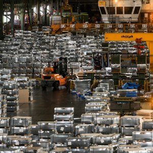 MSC Sees Double-Digit Growth in Output, Sales