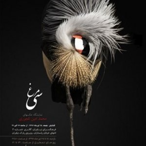 30 Birds in Photo Exhibition
