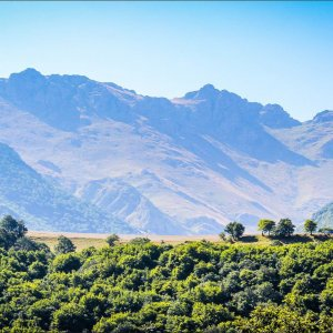 Some 780 plant species belonging to 89 families are recorded in Arasbaran protected area.