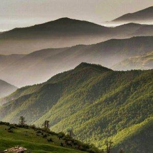 Abr Forest to Host Int'l Eco-Marathon