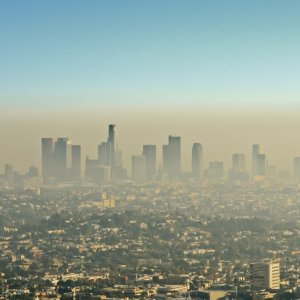Current Ozone Levels  Pose No Grave Threat