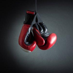 Four Boxers Enter Bulgaria Tournament Quarterfinals