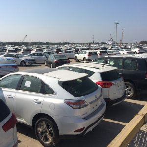 Some auto importers have made fortunes from the volatile import rules and the chaotic market over the past several years.