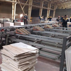 Gov't Support Needed to Fulfill Tile, Ceramic Industry's Potentials