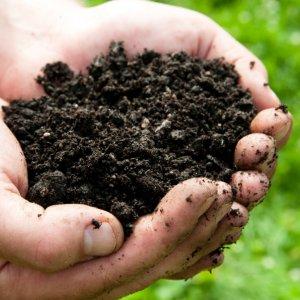 Concern Over Soil Erosion