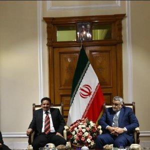 Iran Backs Efforts to Stop Bloodshed in Yemen
