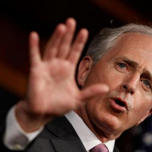 Senator's Take on Possible Concessions
