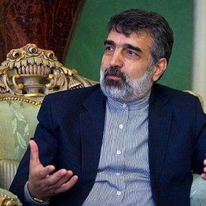 Salehi, Moniz Gave Impetus to Nuclear Talks