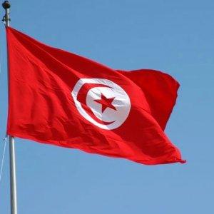 Tunisia Envoy Due in Tehran