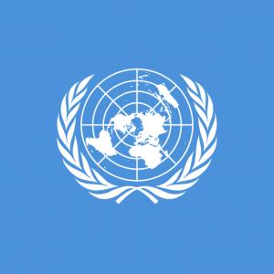 Bid for UN Post