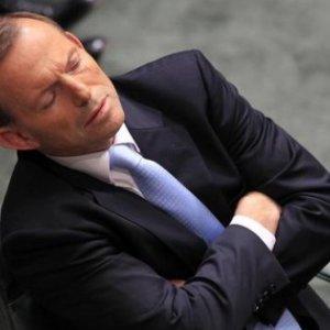 Abbott Survives Leadership Challenge