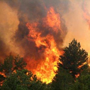 8,000 Canadians Evacuated