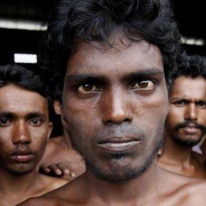 Crocodile Tears for Rohingya