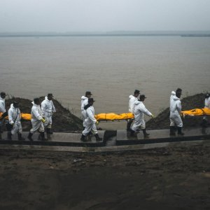 Dozens of Bodies Recovered