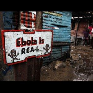Ebola Toll  Near 4,500