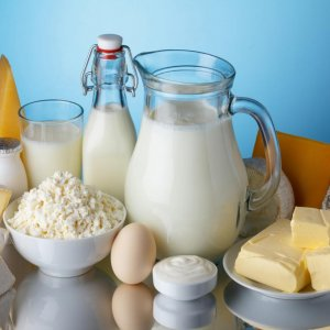 Dairy Exports to Russia Scheduled