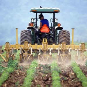 Agriculture Beyond Borders