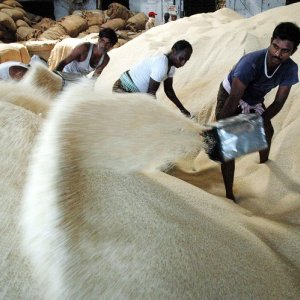 Basmati Imports to Pick Up After October