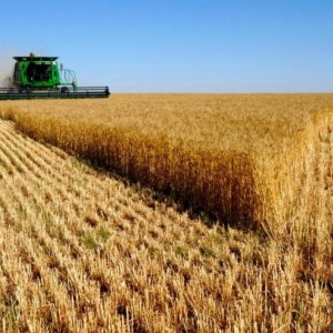Key Challenges in Agriculture Sector