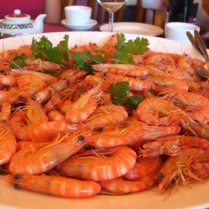 Shrimp Production to Rise