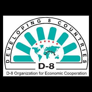 Public, Private Sector Collaboration Urged in D-8 Meeting
