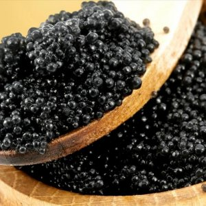 Caviar Prices