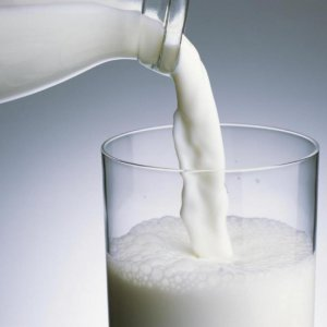 Dairy Exports Marred by  Milk Prices