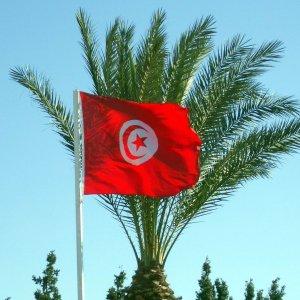 Tunisian Delegation Visits Alborz