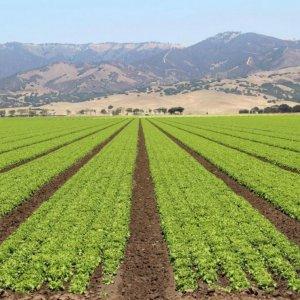 """Beyond Border Farming""  Gets Underway"