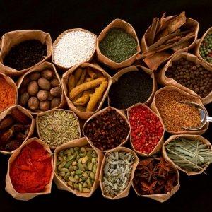 Iran's 1st Medicinal Plants Factory