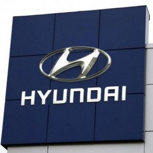 Hyundai Offers to Invest in Anzali