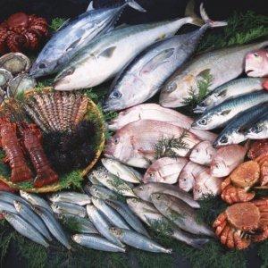 Aquatic Exports to EAEU Facilitated