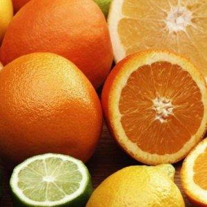Mazandaran Citrus Production