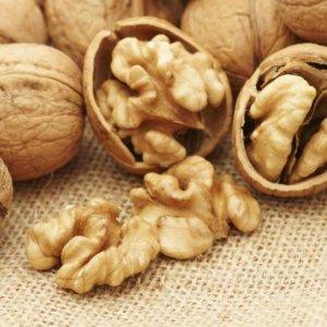 Walnut Exports