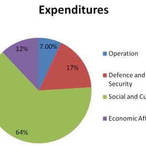 Budget Elements
