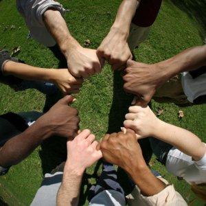 Cooperatives Create Jobs, Boost Economy