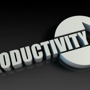 Sustainable Growth Function of Increased Productivity