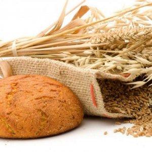 Bread Saga