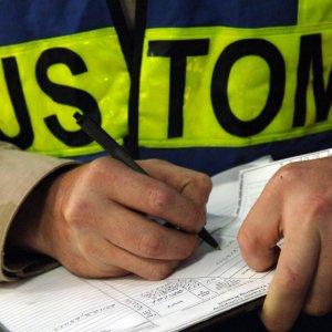 Rise in Customs Revenues